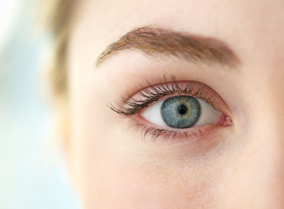 Learn More About Dry Eye